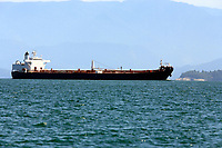 super tanker in ilha grande of state of rio de janeiro in angra dos reis in brazil