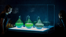 """© Licensed to London News Pictures. 11/09/2018. LONDON, UK. Visitors view """"Algae Lab"""", designed by Studio Klarenbeek & Dros at Atelier Luma, a factory line that 3D prints in algae, at a preview of the 87 nominees for the eleventh Beazley Designs of the Year exhibition and awards at the Design Museum in Kensington.  The exhibition runs 12 September to 6 January 2019 and celebrates the most innovative designs of the last year.  Photo credit: Stephen Chung/LNP"""