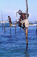 Sri Lanka<br /> Côte sud  - Weligama - Pêcheur sur échasses