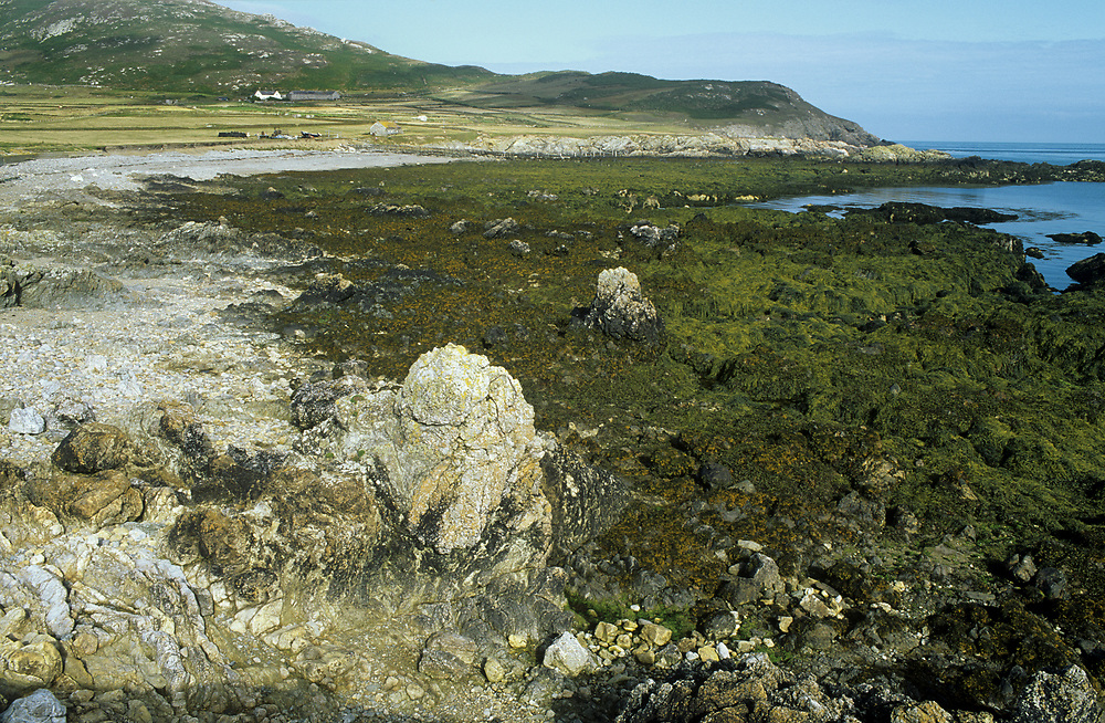 A rocky shore at low tide on Bardsey Island, off the coast of Wales, United Kingdom.
