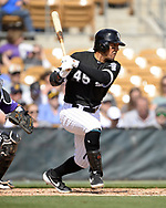 GLENDALE, ARIZONA - MARCH 02:  Jon Jay #45 of the Chicago White Sox bats against the Colorado Rockies on March 2, 2019 at Camelback Ranch in Glendale Arizona.  (Photo by Ron Vesely)  Subject:  Jon Jay