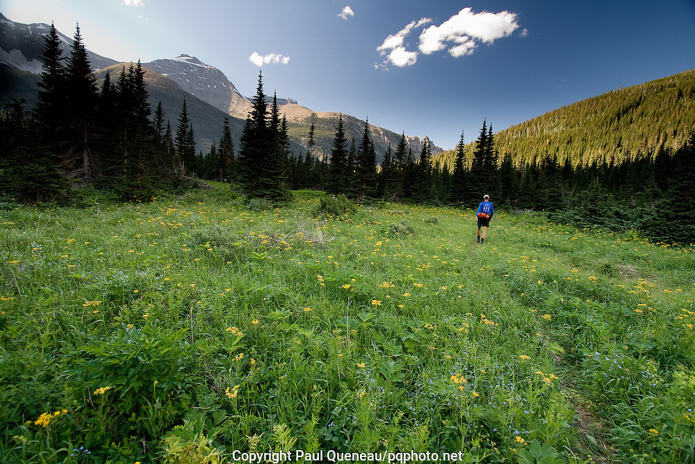 Late afternoon near Mokowanis Lake in Glacier National Park's backcountry