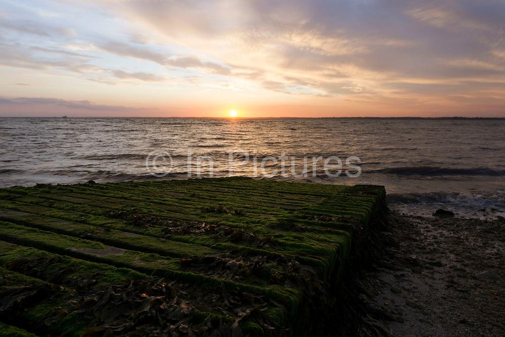 Sunset; Gurnard; Solent; Isle of Wight; UK; sundown; sea; clouds; jetty; seaweed; green