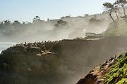 Seal Rock at La Jolla Cove in San Diego California