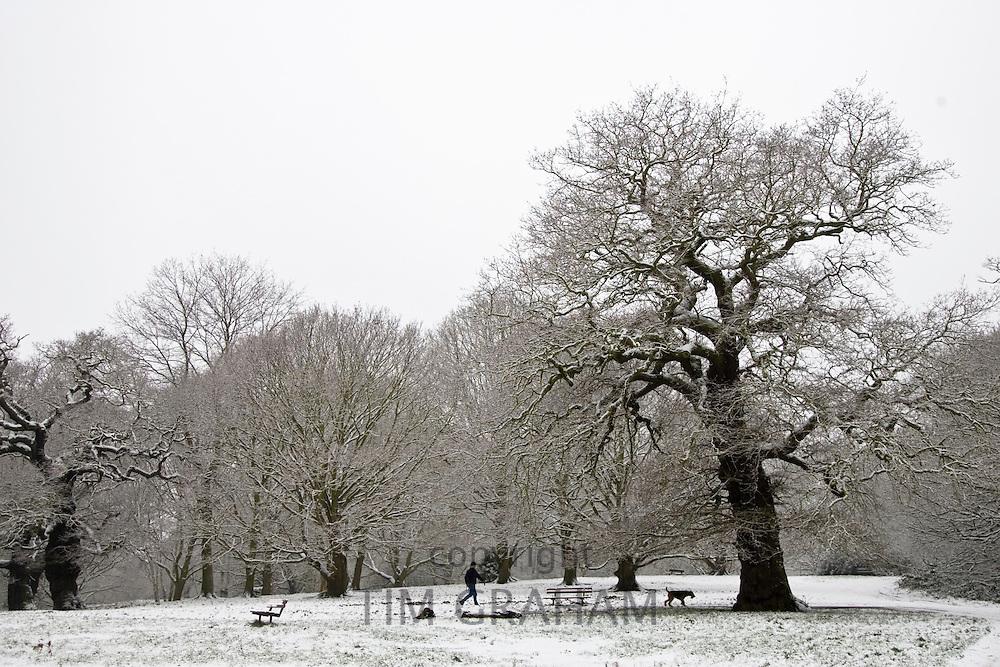 Man walks dog on winter's day across snow-covered Hampstead Heath, North London, England, United Kingdom