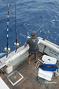 skipper Steve Campbell grabs a rod to fight a fish on his charter vessel Reel Addiction, off Hunga Island, Vava'u, Kingdom of Tonga, South Pacific