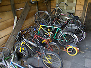 a family's bicycle collection in the bicycle stable Holland