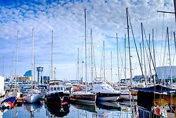 Yachts in the marina, Barcelona, Catalonia, Spain<br /> <br /> (c) Andrew Wilson | Edinburgh Elite media