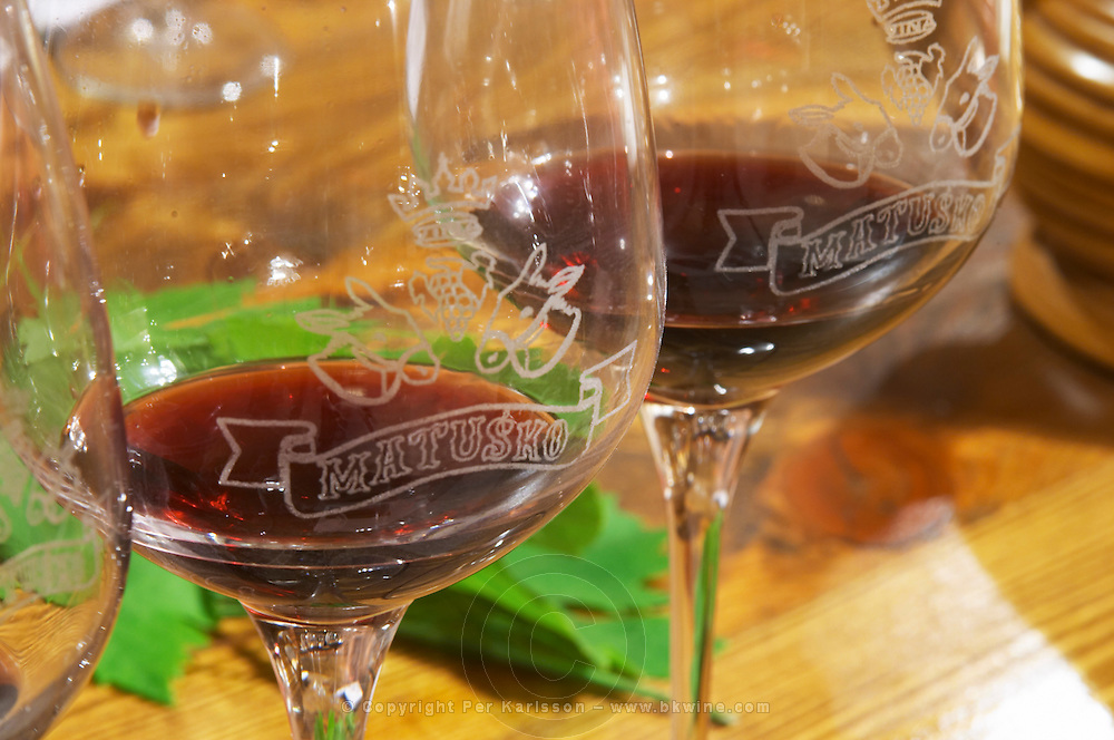Wine Glasses with emblazoned decoration of crown grape bunch two donkey's heads and the winery name. Matusko Winery. Potmje village, Dingac wine region, Peljesac peninsula. Matusko Winery. Dingac village and region. Peljesac peninsula. Dalmatian Coast, Croatia, Europe.