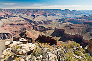 Maricopa Point. Exceptional landscape vistas draw millions of worldwide visitors to the South Rim of Grand Canyon National Park, Arizona, USA. Grand Canyon began forming at least 5 to 17 million years ago and now exposes a geologic wonder, a column of well-defined rock layers dating back nearly two billion years at the base. While the Colorado Plateau was uplifted by tectonic forces, the Colorado River and tributaries carved Grand Canyon over a mile deep (6000 feet / 1800 meters), 277 miles (446 km) long and up to 18 miles (29 km) wide.
