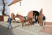 Stefan Robel prepares his horse Bertie (left in the stable) and his brother prepares his horse Manu for the traditional Sorbian Easter celebration on Sunday. <br /> <br /> Stefan and his brother are Standard Bearer (Fahnenträger) since 9 years.<br /> <br /> More than 400 of so called Osterreiter (Easter Riders) will ride from village to village to sing and announce the resurrection of Jesus Christ.<br /> This tradition dates back at least to 1541. <br /> <br /> Keule, Wittichenau, District of Bautzen in Upper Lusatia, Saxonia, Germany on March 30, 2018.