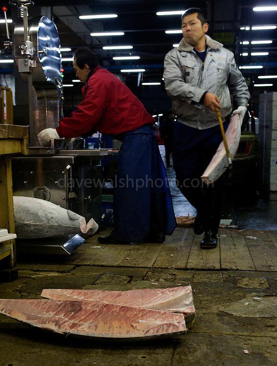 Tokyo Tsukiji Fish Market: cutting frozen tuna on a bandsaw..Tokyo Metropolitan Central Wholesale Market or Tsukiji Fish Market is the largest fish market in the world.