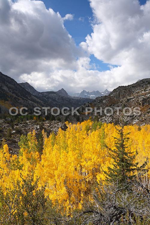 California Sierra's Nature Landscape Stock Photo