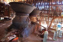 Making Palm Juice