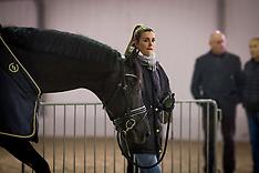 Horse Inspection dressage - Mechelen 2019