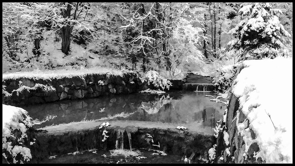 Wintry pond