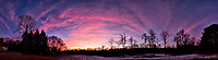 Dawn Morning Clouds. Winter Backyard Nature in New Jersey. Composite of 10 images taken with a Fuji X-T1 camera and 16 mm f/1.4 lens (ISO 200, 16 mm, f/2.8, 1/60 sec). Raw images processed with Capture One Pro and the composite generated with AutoPano Giga Pro.