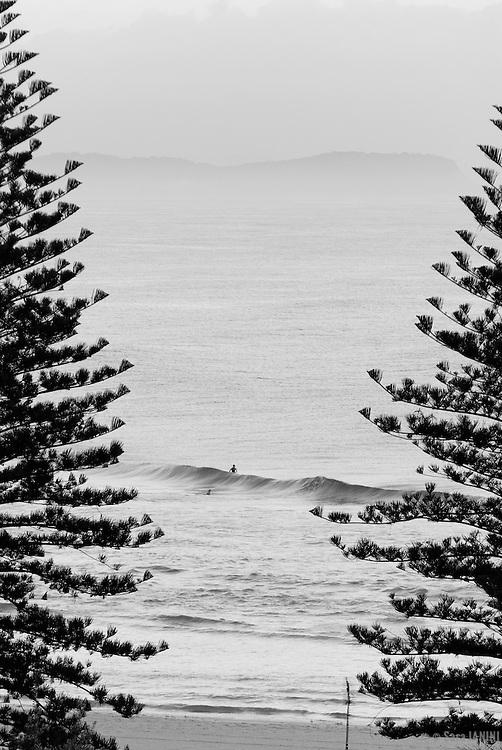 Gold Coast, Coral Sea, Autralia, Oceania