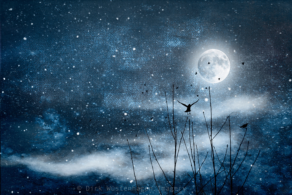 Full moon night with birds, mist and stars. Composite image<br /> REDBUBBLE prints & more: http://rdbl.co/2D0gODg<br /> Society6 prints: http://bit.ly/2ErNCS3