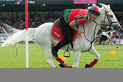 © Licensed to London News Pictures. 21/07/2015. Llanelwedd, UK. A Welsh rider negotiates the cour as teams of riders take part in theRoyal Welsh Mounted Games – International World Team Championships. The Royal Welsh Show is hailed as the largest & most prestigious event of it's kind in Europe. In excess of 200,000 visitors are expected this week over the four day show period - 2014 saw 237,694 visitors, 1,033 tradestands & a record 7,959 livestock exhibitors. The first ever show was at Aberystwyth in 1904 and attracted 442 livestock entries. Photo credit: Graham M. Lawrence/LNP