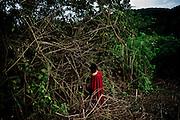 Rosa Sandoval clears the forest to farm yuca in an area near the village of Tsiquireni, Ene River. Peru. April 2012. Photo/Tomas Munita
