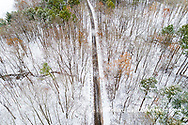 63877-00814 Trees and road with a dusting of snow aerial view Stephen A. Forbes State Park Marion Co. IL