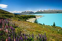 Lake Pukaki, south island, New Zealand