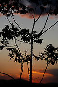 Jeceaba_MG, Brasil.<br /> <br /> Por do sol em Jeceaba, Minas Gerais.<br /> <br /> The sunset in Jeceaba, Minas Gerais.<br /> <br /> Foto: BRUNO MAGALHAES / NITRO