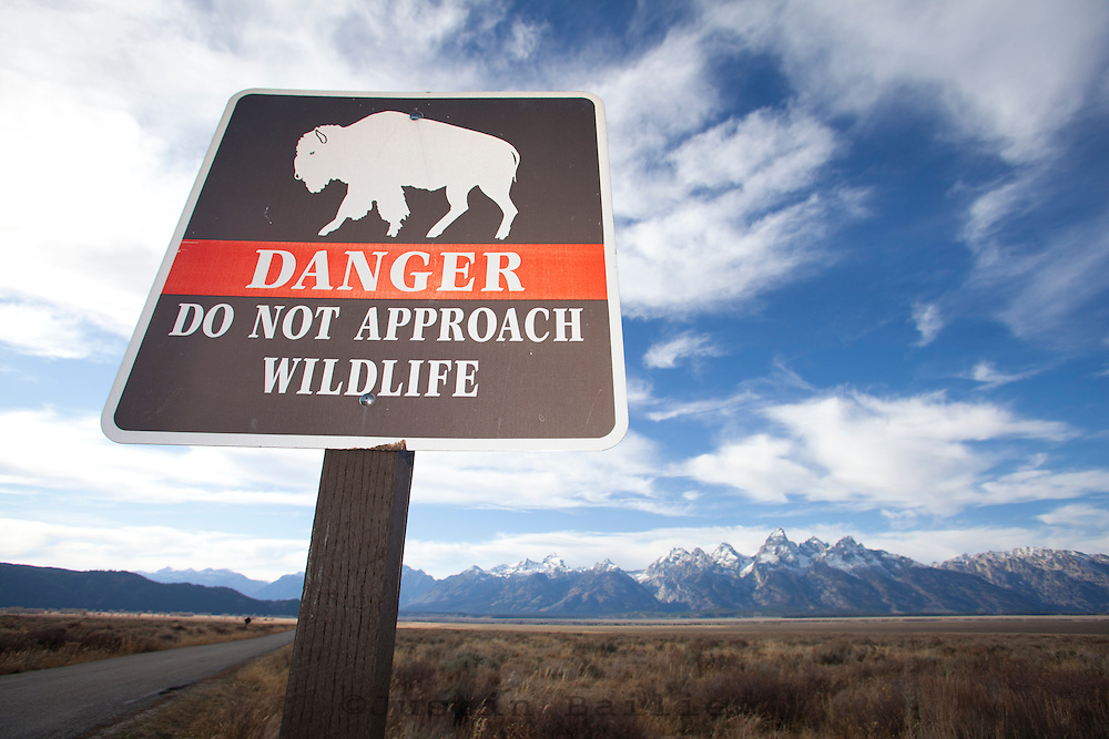 Sign warning people about the dangers of wildlife. Grand Teton National Park, WY.