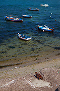 Fishing boats in the harbour at Trapani, Sicily