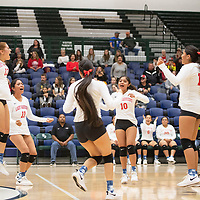Pine Hill cheers after winning a point in their match against Tatum Thursday evening at Rio Rancho High School in the NMAA Class 1A State Volleyball tournament in Rio Rancho. Pine Hill won the match in five sets.