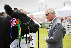 © Licensed to London News Pictures. 14/07/2015. Harrogate, UK. Prince Charles inspecting the cows at the 157th Great Yorkshire Show that opened today in Harrogate. Photo credit : Andrew McCaren/LNP