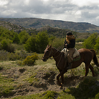A Chilean gaucho rides  in Torres del Paine National Park, Patagonia, Chile.