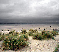 The beach at West Wittering in West Sussex. Photographed by Terry Fincher.