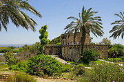 Tel Afek, is an archaeological site located in the coastal hinterland of the Ein Afek Nature Reserve, east of Kiryat Bialik, Israel. It is also known as Tel Kurdani.