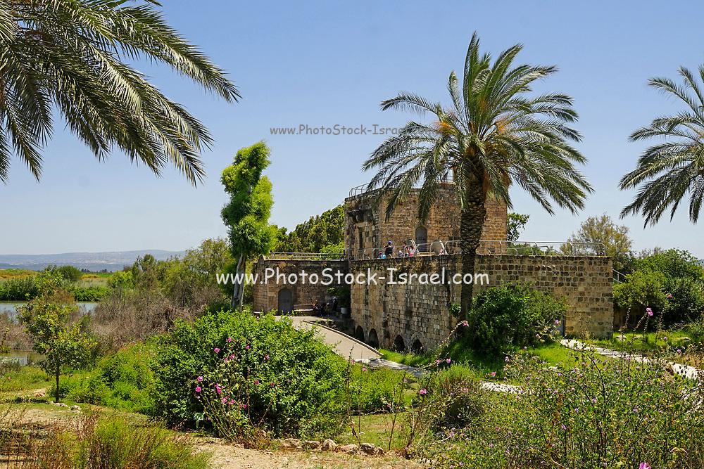 Tel Afek, is an archaeological site located in the coastal hinterland of the Ein Afek Nature Reserve, east of Kiryat Bialik, Israel. It is also known as Tel Kurdani.