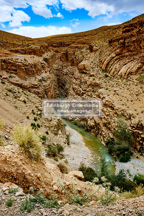 The Dades River carves it's way through the spectacular Dades Gorges, Morocco<br /> <br /> (c) Andrew Wilson   Edinburgh Elite media