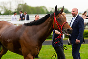 Bayards Cove ridden by Kieran O'Neill and trained by Stuart Kittow in the Mj Church Plant And Transport Handicap race.  - Ryan Hiscott/JMP - 24/05/2019 - PR - Bath Racecourse - Bath, England - Friday 24th May 2019 Race Meeting at Bath Racecourse