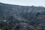 A fire truck drives by the burned area from a wildhfire, Monday, Sept. 4, 2017, in the Sunland-Tujunga of Los Angeles, the United States, on Sept. 4, 2017. More than 1,000 firefighters work for a fourth day to put out a 7,000-acre brushfire that is 30 percent contained, as the last of the residents ordered to evacuate the record-setting blaze were expected to<br /> return to their homes authorities said. (Xinhua/Zhao Hanrong)(Photo by Ringo Chiu)<br /> <br /> Usage Notes: This content is intended for editorial use only. For other uses, additional clearances may be required.