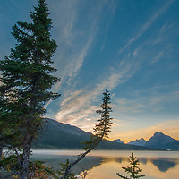 Fir trees lean over misty Bow Lake at sunrise in Banff National Park, Alberta Canada.  Behind are (L to R) Cirque Peak, Mount Andromache, Mount Hector, and Bow Peak.