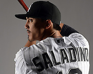 GLENDALE, ARIZONA - FEBRUARY 27:  Tyler Saladino #18 of the Chicago White Sox poses for a portrait during photo day on February 27, 2015 at Camelback Ranch in Glendale Arizona.  (Photo by Ron Vesely)    Subject:  Tyler Saladino