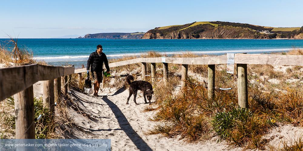 Man with dog, walking through beach access path. Omaha Beach, North Auckland.