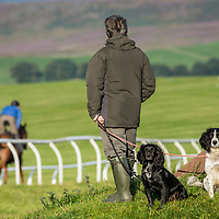 watching at the gallops in  middleham North Yorkshire