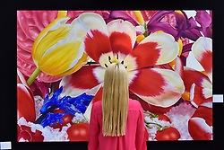 "© Licensed to London News Pictures. 27/06/2017. London, UK.  A visitor views ""Upper East-Side Glacier, 2007"" by Marc Quinn at The Arts & Antiques Fair taking place at Olympia in Kensington.  The event is the UK's largest and most established art and antiques fair and runs until 2 July.  Photo credit : Stephen Chung/LNP"