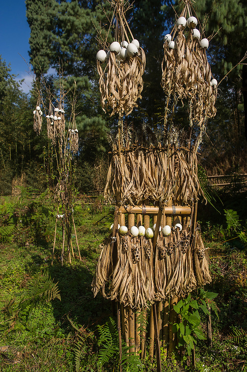 Apatani sacrificial area. Either for ceremonies or done by shaman when someone is household in sick<br /> Apatani Tribe<br /> Ziro Valley, Lower Subansiri District, Arunachal Pradesh<br /> North East India