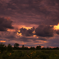 """""""Fire in the Sky Tonight""""<br /> <br /> Feel the rush of emotions and excitement as you watch the many varieties of clouds fly by during an explosive sunset over a Midwestern farm field in Michigan!"""