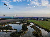 """Wetland"" | Drone"