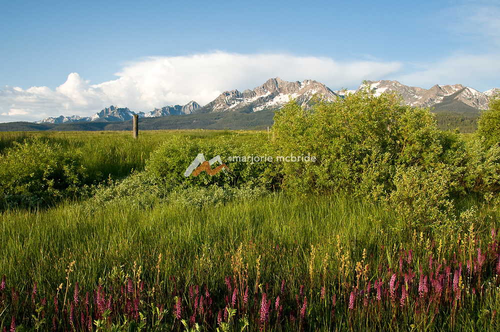 Scenic view of the Sawtooth Mountains during spring in Stanley, Idaho.