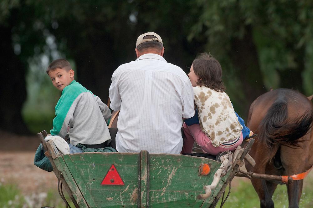 Farming family in traditional horse drawn cart, near Lake Belau, Lake Belau, Moldova, June 2009