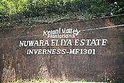 Scottish place name sign for tea estate Nuwara Eliya, Central province, Sri Lanka, Asia